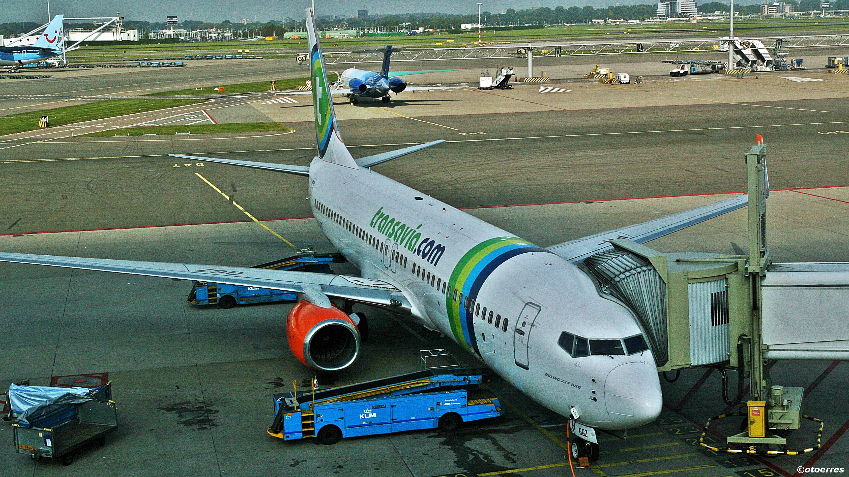 Transavia - Boeing 737 - Schiphol (foto: ©otoerres)