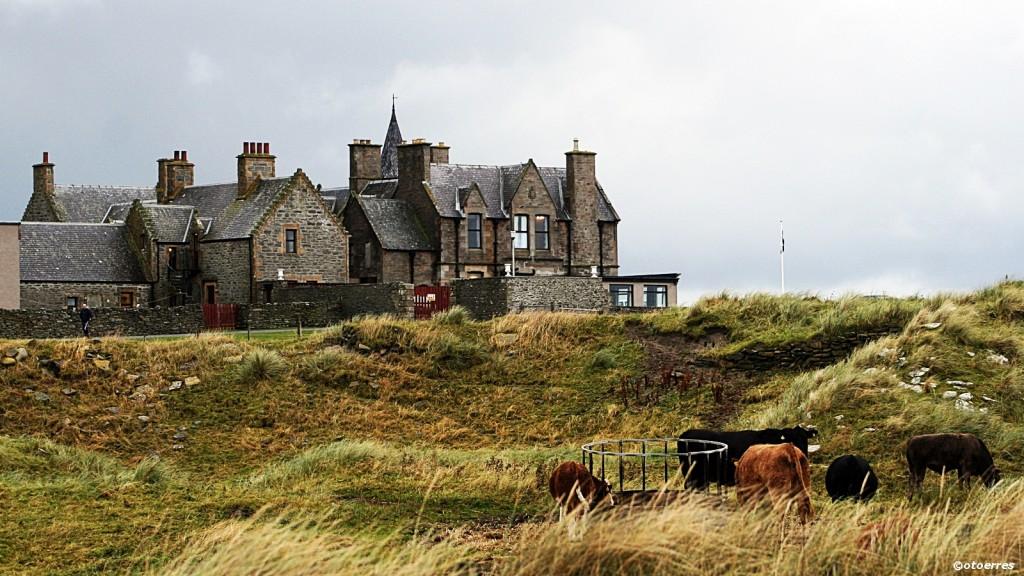 Sumburgh Hotel - Shetland