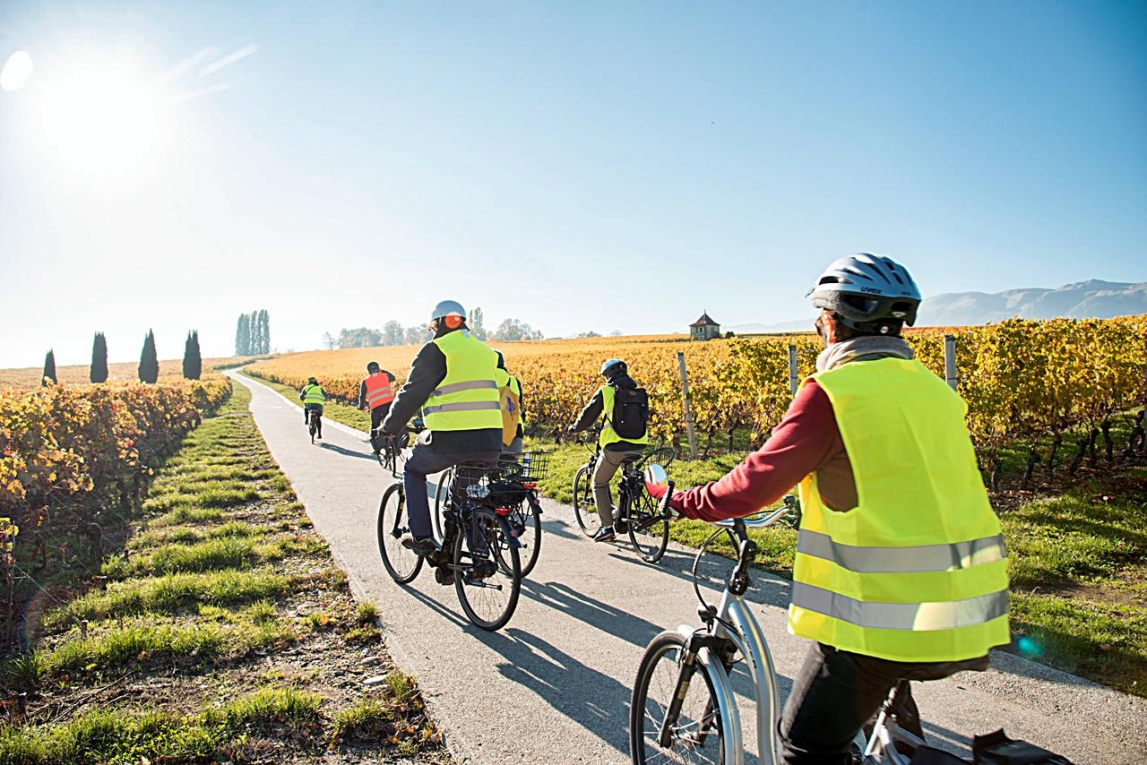sykkeltur - vinmarker - Geneve - Sveits