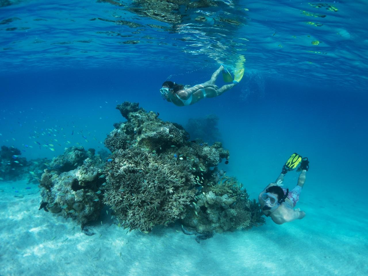 Cookøyene vil bli verdens grønneste reisemÃ¥l, og har etablert en av verdens største marin parker