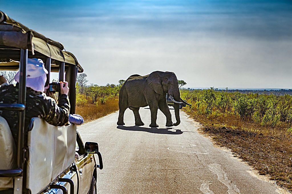 Emirates - Destinasjoner - Sør-Afrika - Kruger nasjonalpark