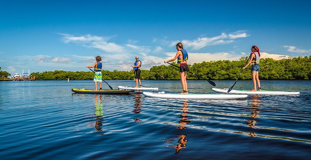 Paddleboard - Vannsport - Fort Myers - Sanibel - Florida - USA