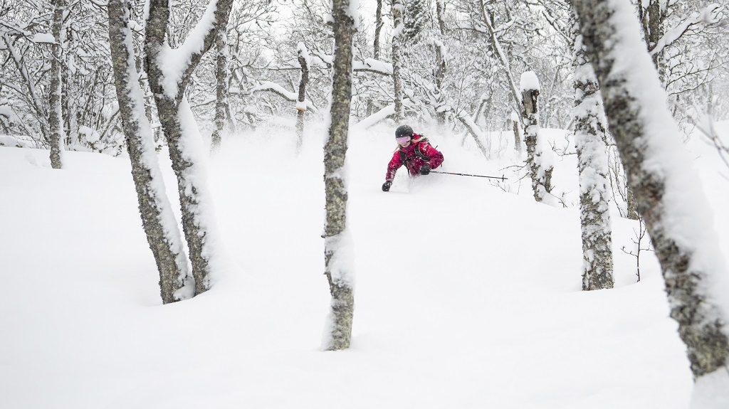 Offpiste - ski - Puddersnø - Hemsedal