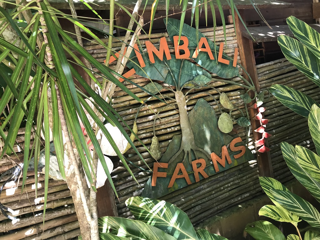 Jamaica - Zimbali Farms - Zimbali Culinary Retreats