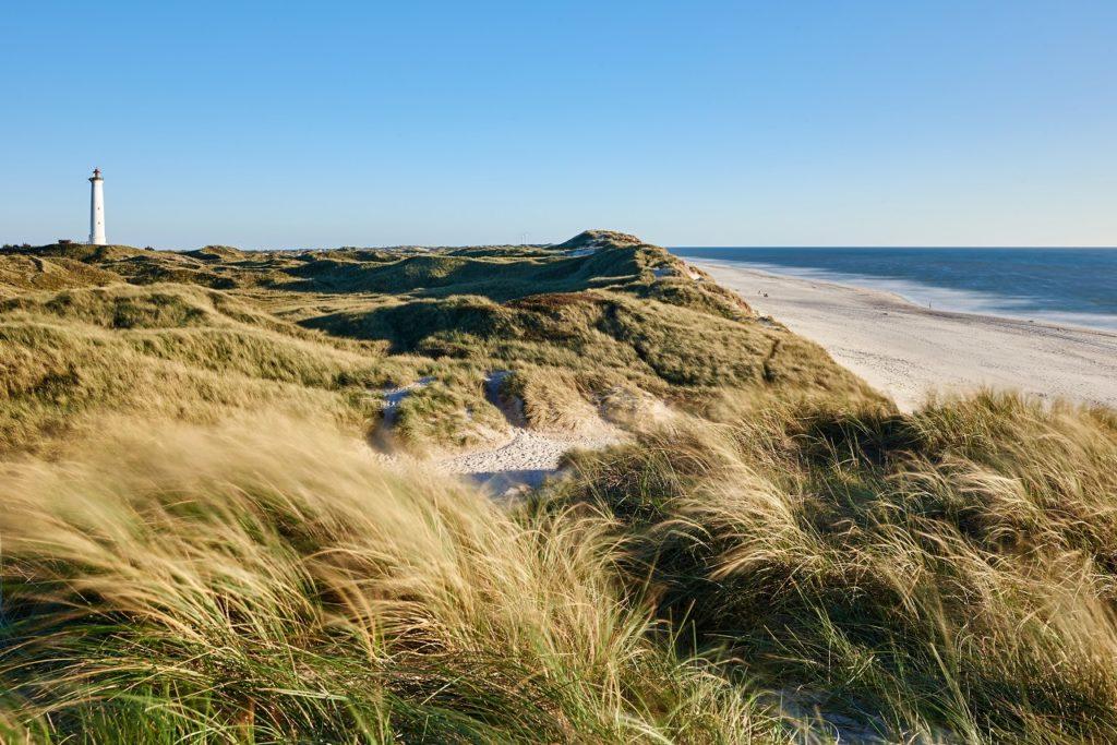 Strand - Vesterhavet - Jylland - Danmark - Apollo