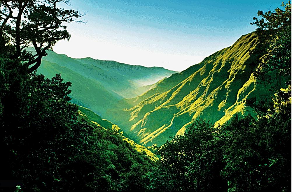 Madeira - Portugal - vandreturer - Ving - 25 fountains Path