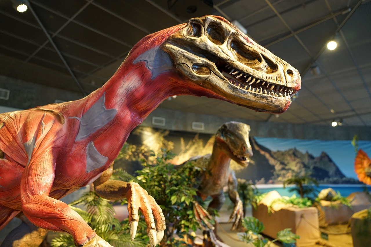 Dinosauria - utstilling - INSPIRIA science center- Sarpsborg - 2020