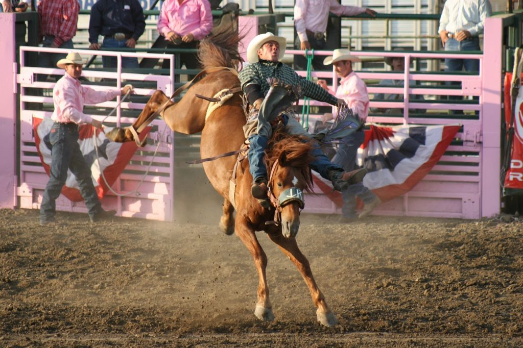 Rodeo - Nord-Dakota - The Great American West - USA