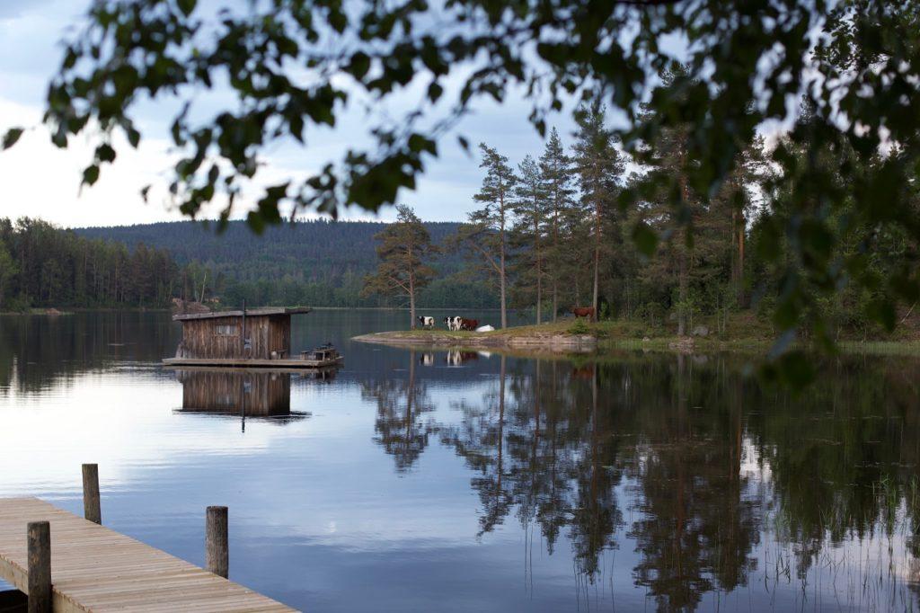 Naturcamp - Naturbyn - Eldan - Värmland - Sverige