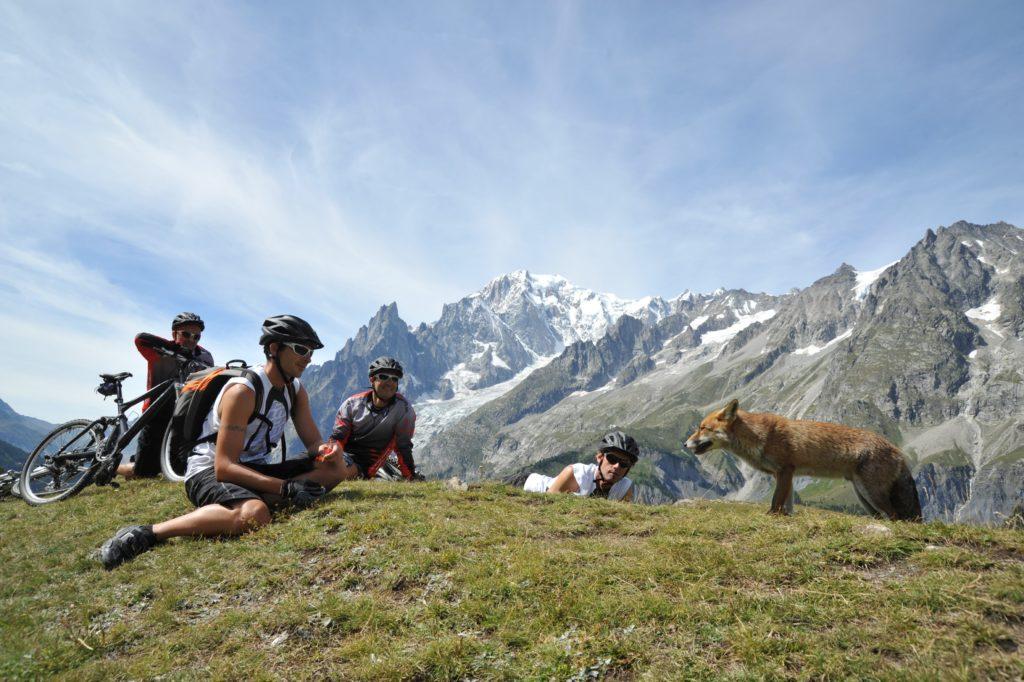 Sykkelpause - MTB - Val Ferret - Valle D`Aosta - Italia
