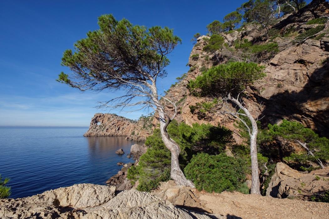 Sa Foradada - Halvøy - Mallorca - Spania