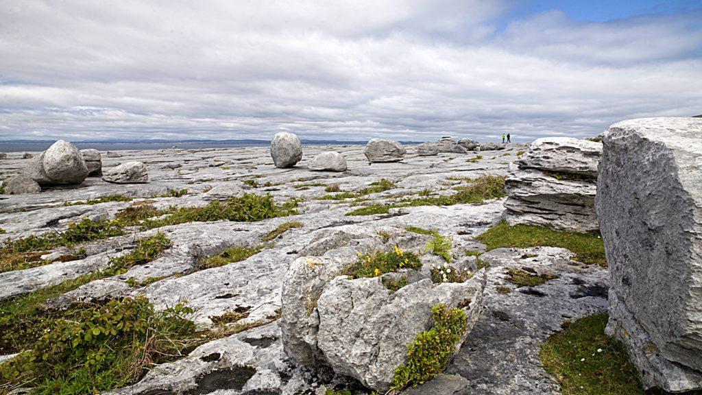 Black Head - Økolandskap - Burren - The Wild Atlantic Way - Irland