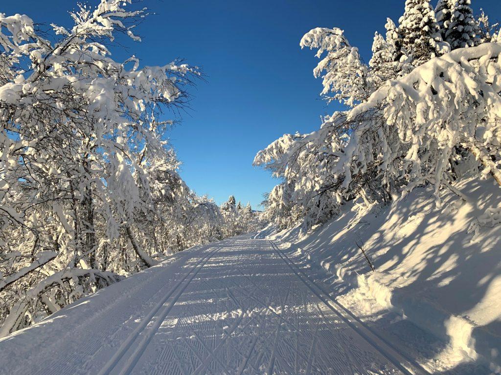 Snø - Skiføre - Vinterlandskap - Norge - If forsikring - Europeiske