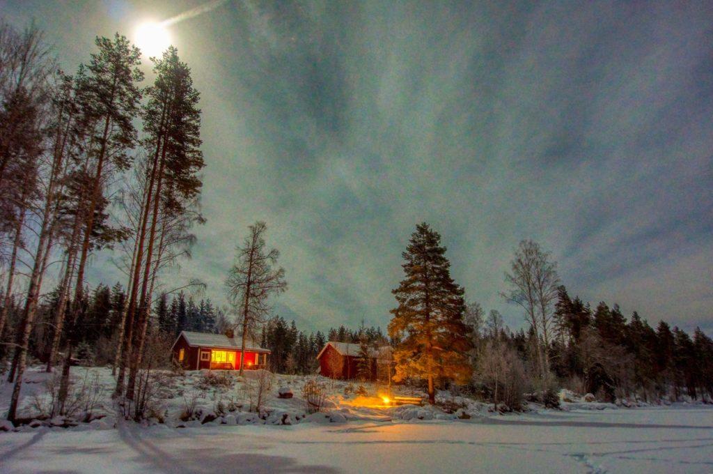Nordre Borthuskoia - Varald statsskog -Kongsvinger - Hedmark