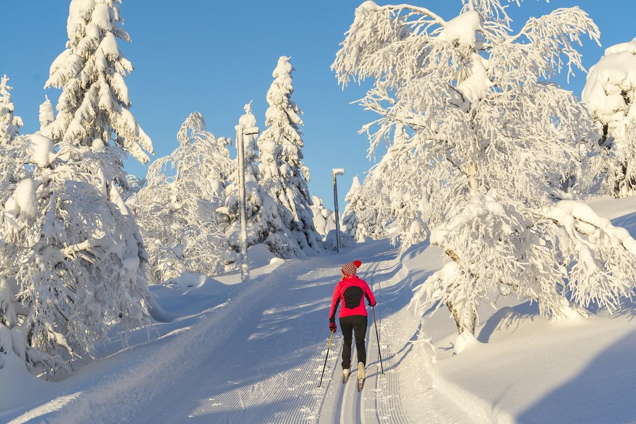 Kvinnelig skiløper - Snø - Langrennsløype - Finland