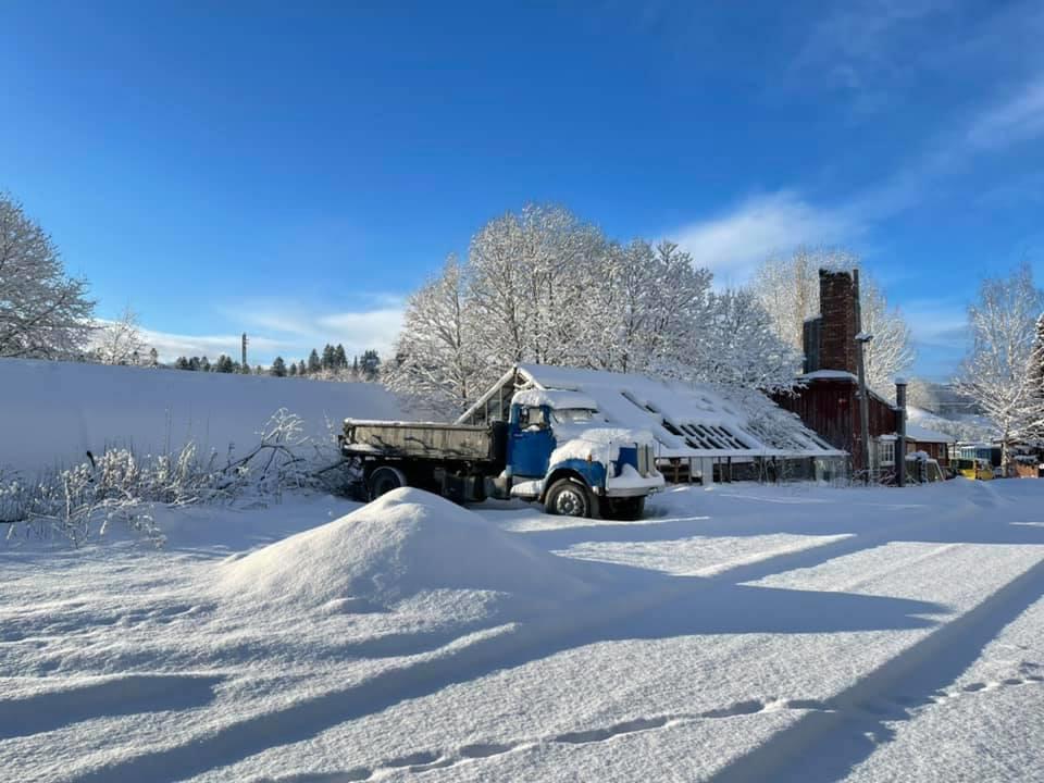 Snø - vinter - Trøndelag 2021 - Meteorologisk institutt