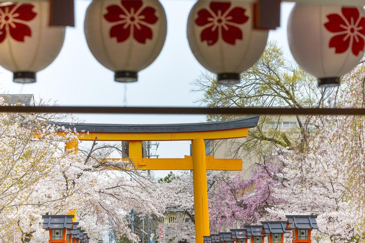 Japan - Illustrasjon - Related