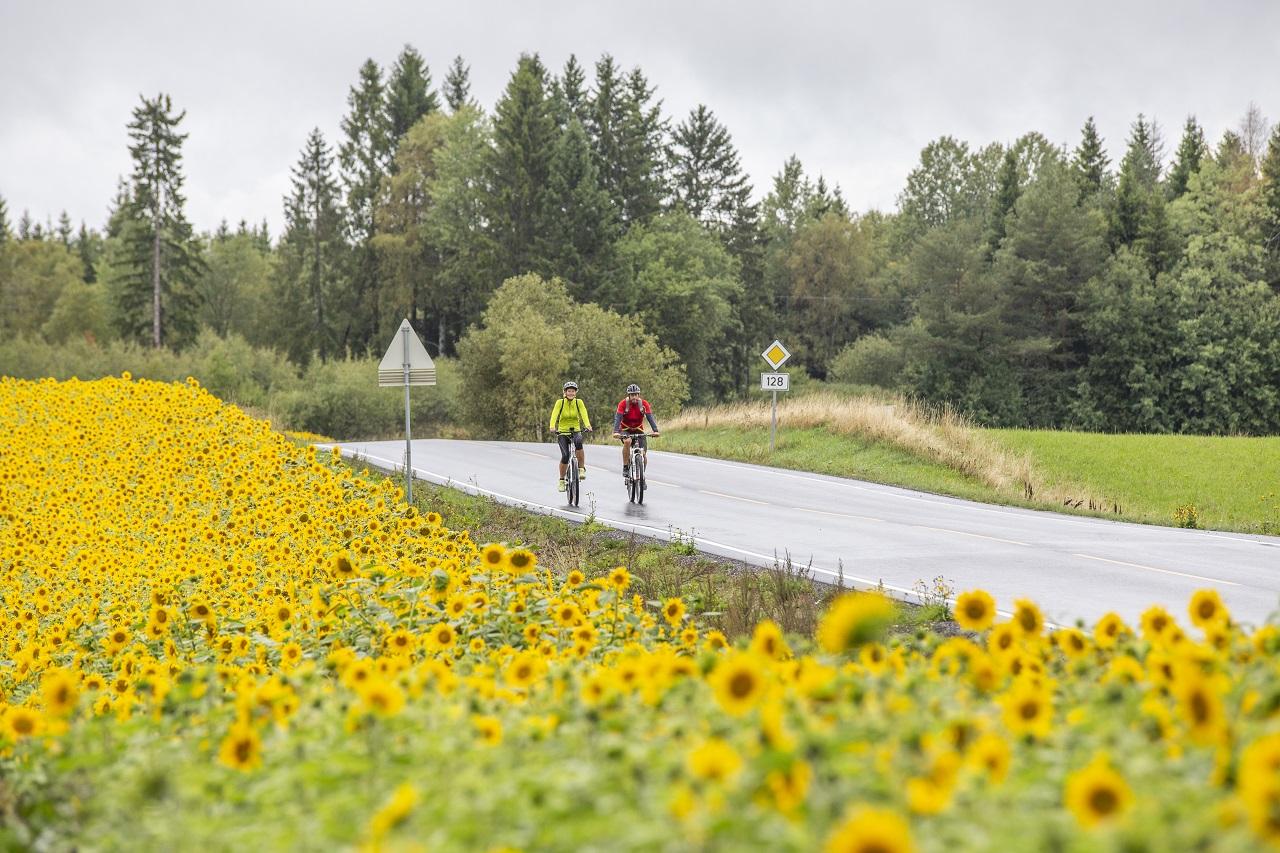 Unionsleden - Sykkelrute - Grenselandet Norge og Sverige - juni - 2021