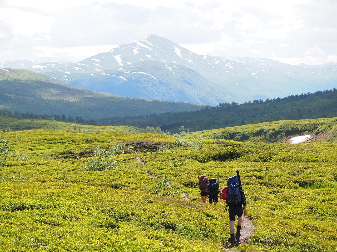 Turgåere - Tespdalen - Saltfjellet-Svartisen Nasjonalpark - Statskog