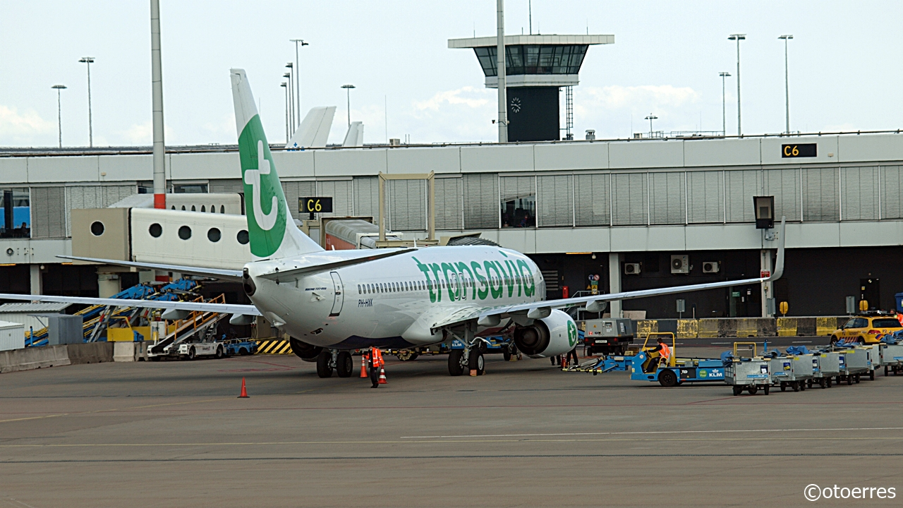 Boeing 737-800 - Transavia - Amsterdam - Schiphol